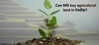 Can An NRI Buy Agricultural Land In India